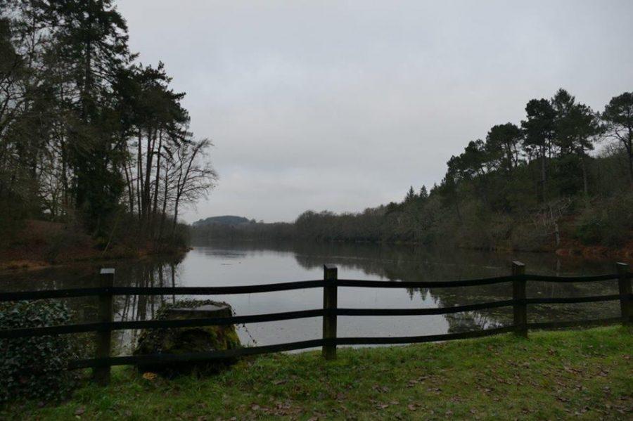 L'étang du Baron, un nouveau lieu de pêche